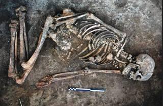 Международная группа археологов обнаружила в Украине уникальный скелет