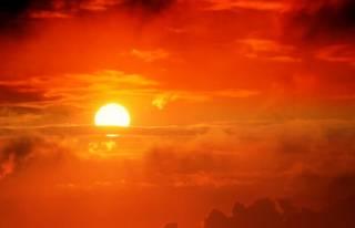Ученые пугают человечество стремительным ростом смертности от жары