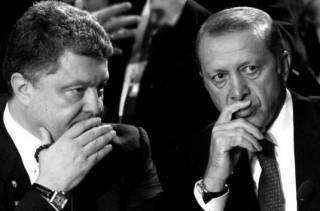 Зачем Порошенко влез во внутренний конфликт Турции?