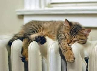 В одном из районов Киева в разгар летней жары внезапно включили отопление