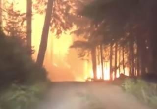 Побег от лесного пожара: американская семья показала эпичное видео