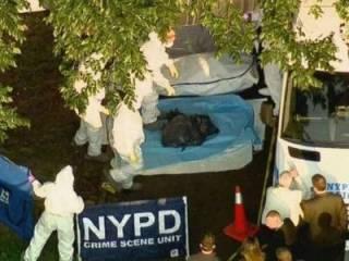 В Нью-Йорке расчлененный труп женщины лежал посреди улицы