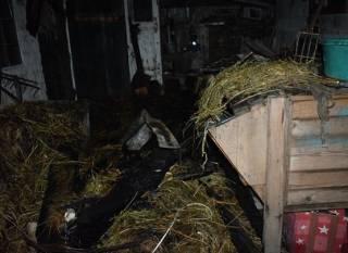На Ровенщине два ребенка погибли после шалостей с огнем