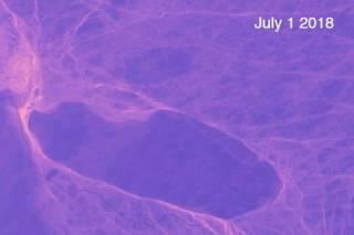 Исследователей озадачило необычное движение гигантского айсберга размером с половину Ямайки