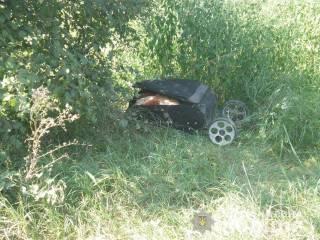 Возле железной дороги под Киевом случайная прохожая обнаружила кравчучку с расчлененным телом