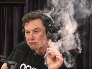 Илон Маск обвалил акции Tesla в прямом эфире. Появилось видео