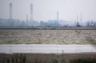 У Порошенко заявили о «нормализации» ситуации в аннексированном Крыму после «химатаки»