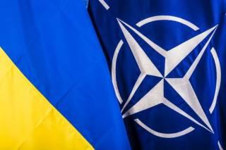 Зубченко: Данные фонда Бекешкиной на тему НАТО - социологическая проституция