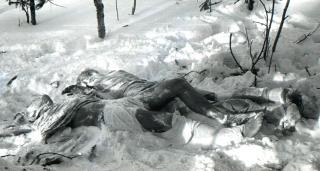 Тайна гибели группы Дятлова почти раскрыта: стали известны новые подробности