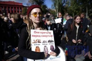 Тысячи активистов рассказали украинцам, что делала их шуба перед смертью