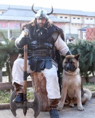 Под Киевом пройдет фестиваль собак «Лохматые лапки»