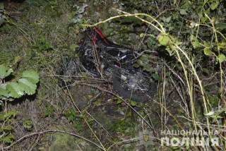 Трагедия на Волыни: два юных парня погибли в ДТП