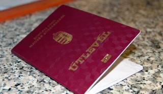 В базу Миротворца попали закарпатские чиновники, присягнувшие на верность Венгрии. Опубликован список