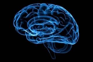 Ученые назвали диету, полезную для мозгов