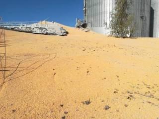 На Сумщине «лопнуло» гигантское хранилище с кукурузой – засыпало целые улицы