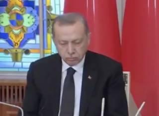 Эрдоган едва не уснул на встрече с президентом Молдовы