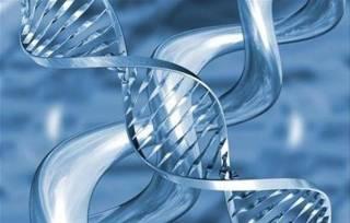 Австралийские генетики сделали страшное открытие, но объяснили, почему это обнадеживает