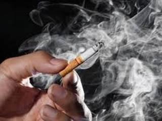 Курильщикам на заметку: ученые назвали продукты, защищающие легкие от разрушения