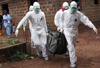 В Африке продолжает бушевать лихорадка Эбола: число жертв стремительно растет