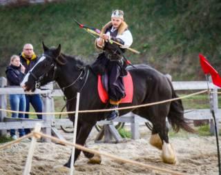 Под Киевом прошел Международный фестиваль конных боевых искусств «Скифы-2»