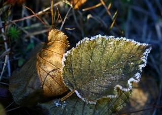 На выходных в Украине ударят морозы