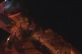 Бойня в Калифорнии: в одном из местных баров застрелили двенадцать человек
