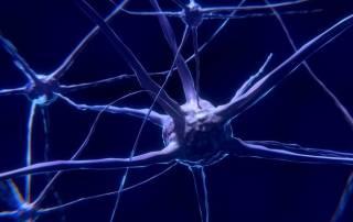 Японские ученые сделали грандиозный прорыв в лечении страшной болезни