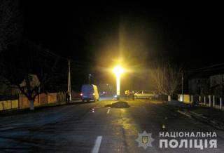 В Черновицкой области микроавтобус сбил телегу с лошадью. Не обошлось без жертв