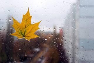 В Украине ожидается похолодание и мокрый снег