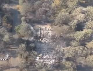 Пожар в Калифорнии: потушить огонь поможет дождь?