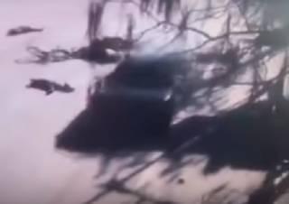 В Китае автомобиль влетел в группу школьников – многие погибли (видео 18+)