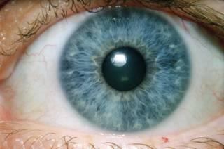 Ученые нашли в глазах человека кое-что смертельно опасное