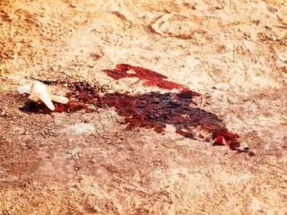 На Полтавщине мужик погиб жуткой смертью во время кражи «национального достояния»