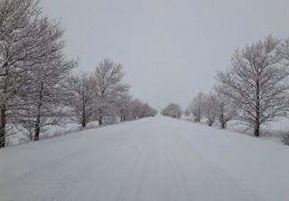 Украину основательно замело снегом: водителям рассказали, по каким дорогам лучше не ездить