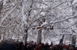 Православные провели молебен-протест под стенами Рады