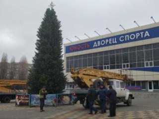 Неизвестные украли новогоднюю гирлянду прямо с главной елки Черноморска