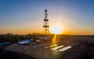 Нардеп Войцицка поздравила инвесторов, которые выходят на отечественный рынок углеводородов