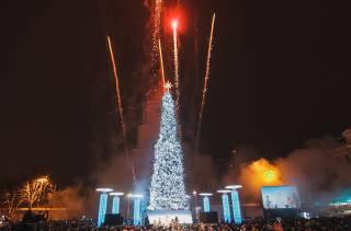 В Киеве зажгли две новогодние елки