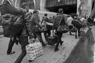 Зачистка Украины продолжается:  Германия открывает рынок труда