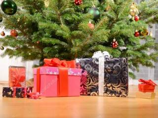 В Германии маленький мальчик вызвал полицию, когда увидел рождественские подарки