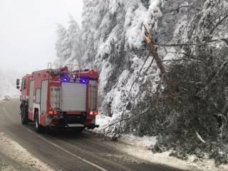 Мощные снегопады частично обесточили Закарпатье