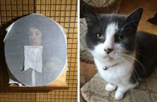 Кот-хулиган из Британии повредил редкую картину семнадцатого века, которую восстанавливал его хозяин