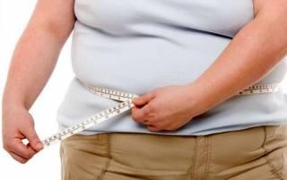 Как оказалось, от ожирения «сохнет» мозг