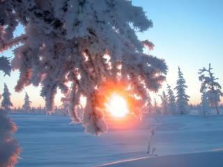 Синоптики сообщили о значительном потеплении по всей Украине до конца недели