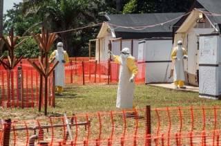 Жертвами Эболы в одной из африканских стран уже стали четыре сотни людей
