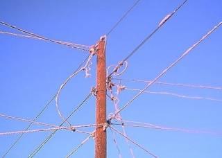 Запорожскую область могут отключить от электричества