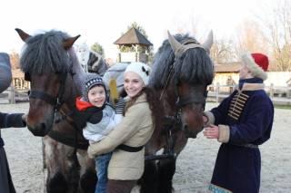 Под Киевом пройдет шоу-выставка уникальных лошадей