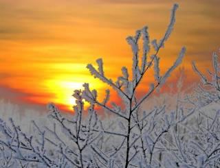 Синоптики пообещали украинцам, что морозы вот-вот отступят