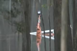 В Австралии при тушении пожара рухнул спасательный вертолет