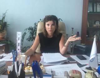 Активисты требуют уволить главу департамента разрешительных процедур Госстройинспекции Чекомасову